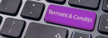 Termeni